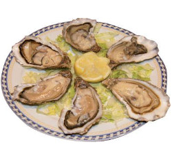 6 Oysters